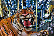 Jumper Photo Framed Prints - Amusement Ride - The Carousel Tiger  Framed Print by Lee Dos Santos