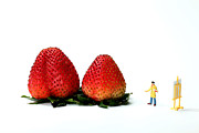 Surrealistic Prints - An Artist drawing strawberries Print by Mingqi Ge