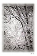 Rene Crystal - An Etching In Winter