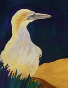 Sea Birds Paintings - An Excellent Fisher by Margaret Saheed