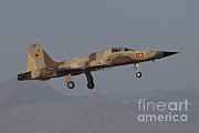The Tiger Metal Prints - An F-5n Aggressor Aircraft Of The U.s Metal Print by Timm Ziegenthaler