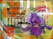 Nashville Tennessee Mixed Media Framed Prints - An Iris for The Tennessean Framed Print by Andrea LaHue aka Random Act