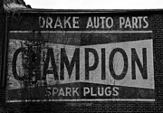Champion Photo Prints - An old Champion Print by David Lee Thompson