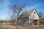 Decaying Prints - An old rundown abandoned wooden barn under a blue sky in midwestern Illinois USA Print by Paul Velgos