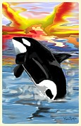 Killer Whale Digital Art - An Orca celebrating the Morning  by Melissa Nankervis