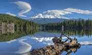 Mount Shasta Photos - An Unusual Twist by Loree Johnson