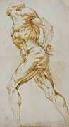 Homoerotic Drawings Metal Prints - Anatomical study Metal Print by Rubens