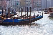 Patricia Hofmeester - Anchored gondolas in Venice