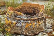 Patricia Hofmeester - Ancient broken pot