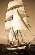 Carribean Prints - Ancient Pirate Ship in Sepia Print by Douglas Barnett