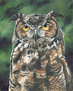 Nocturnal Animal Prints - And You Were Saying Print by Lori Brackett