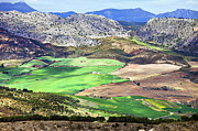 Southern Province Photo Posters - Andalucia Landscape in Spain Poster by Artur Bogacki