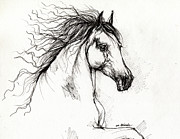 White Horses Drawings Prints - Andalusian horse drawing Print by Angel  Tarantella