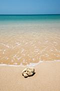 Andaman Sea Print by Arnon Polin