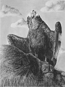Vulture Drawings Metal Prints - Andean Sunrise Metal Print by Heather Ward