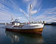 Maritime And Nautical - Andenes Safari Boat by Heiko Koehrer-Wagner