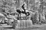Mark Stewart - Andrew Jackson Memorial