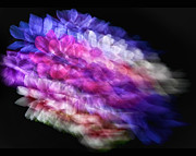 Anemone Abstract Print by Claudia Kuhn