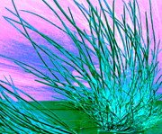 Hair Abstract Art Prints - Anemone Print by Randall Weidner