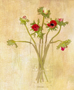 Anemones Framed Prints - Anemones in Vase I Framed Print by Rebecca Cozart