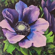 Anenome Prints - Anenome Print by Mary James