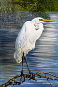 Waterfowl Paintings - Angel At Sylvias Pond by Phyllis Beiser