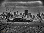 Sausalito Metal Prints - Angel Island State Park California - Alcatraz and San Francisco Skyline Monochrome Metal Print by David Rigg