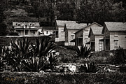 Sausalito Metal Prints - Angel Island State Park California - Camp Reynolds 1863 Monochrome Metal Print by David Rigg