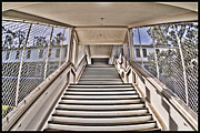 Nike Photo Prints - Angel Island State Park California - Stairs to Detention at USIS United States Immigration Station Print by David Rigg