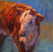 Calf Pastels - Angel by Susan Williamson