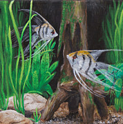 Angelfish Paintings - Angelfish Encounter by Jeremy Reed