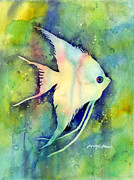 Angelfish Paintings - Angelfish I by Hailey E Herrera