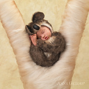 Brown Photo Prints - Angelina 3 weeks Print by Anne Geddes
