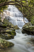 Spring Scenes Acrylic Prints - Angels at Benton Waterfall Acrylic Print by Debra and Dave Vanderlaan