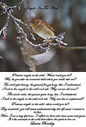 Neutral Colours Posters - Angels In The Wild Poem Poster by Laura Bentley