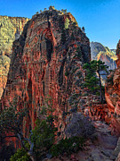 Painterly Framed Prints - Angels Landing Framed Print by Chad Dutson