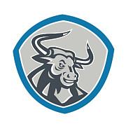 Angry Texas Longhorn Bull Shield Print by Aloysius Patrimonio