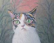 Anguish Framed Prints - Anguish of a Cat Framed Print by Kazumi Whitemoon
