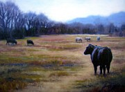 Tennessee Farm Painting Framed Prints - Angus Steer in Franklin TN Framed Print by Janet King