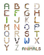 Kangaroo Digital Art Metal Prints - Animal Alphabet Metal Print by Leonard Filgate
