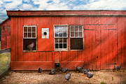 Farm Life Posters - Animal - Bird - Bird watching Poster by Mike Savad