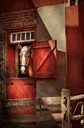 Red Farmhouse Prints - Animal - Horse - Calvins house  Print by Mike Savad