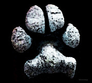 Dog Paw Print Posters - Animal Lovers - South Paw Poster by Sharon Cummings