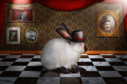 Laid Metal Prints - Animal - The Rabbit Metal Print by Mike Savad