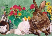 Anne-Elizabeth Whiteway - Animals and Flowers Card...