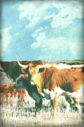Western Western Art Prints - Animals Cows Longhorn  Print by Ann Powell