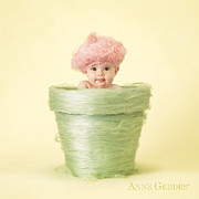 Pot Framed Prints - Annabelle 6 months Framed Print by Anne Geddes