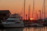 Docked Sailboats Posters - Annapolis Harbor Sunrise III Poster by Clarence Holmes