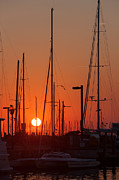 Sailboats Docked Posters - Annapolis Harbor Sunrise IV Poster by Clarence Holmes