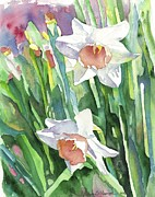 American Watercolor Society Framed Prints - Annas Daffodils Framed Print by Brenda Dolhanczyk